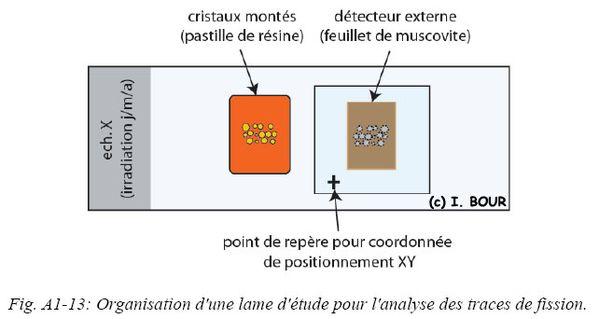 FigA1-13.jpg