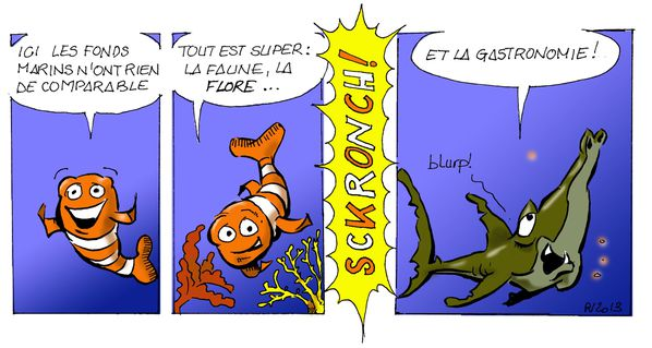 Requins---Voyages--copie.jpg