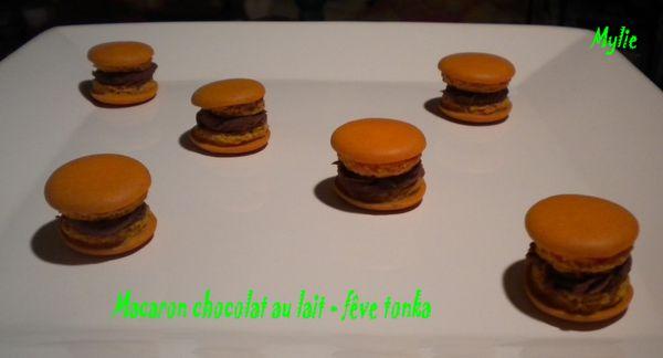 macaron chocolat au lait fêve tonka 3