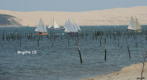 voile062012 11