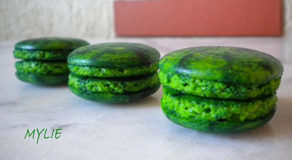 coques macarons 1