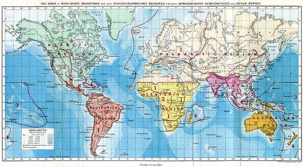 RA-Wallace-the-geographical-distribution-of-animals-1876.jpg