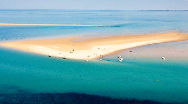 Sandbank-on-the-Ile-de-Re_visionneuse_cat.jpg
