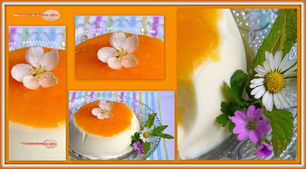 mosaique-panna-cotta-et-coulis-de-mangue.jpg