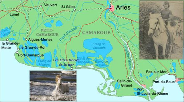 Camargue_map-bis--Small-.jpg