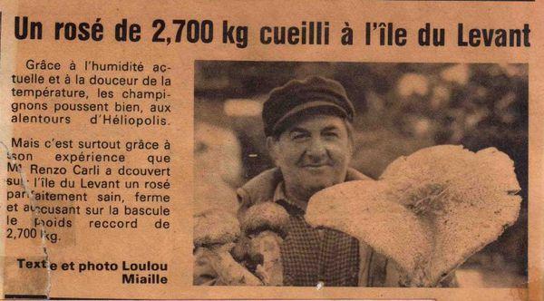 roséCarli1981