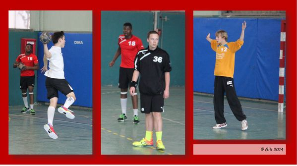stella sports saint maur handball