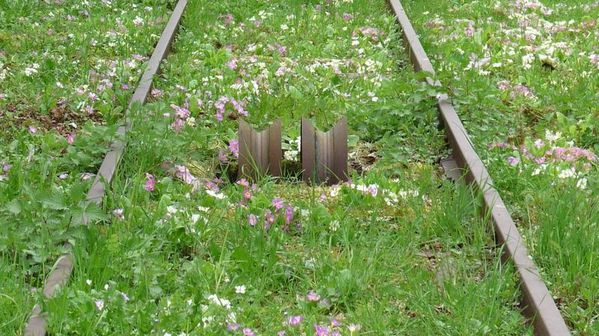 rails funiculaire
