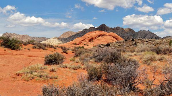 Snow Canyon Petrified Dunes