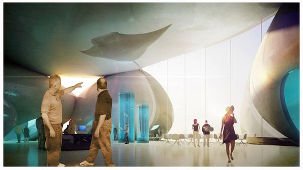 1281643059-hla-batumi-aquarium-int-01-1000x561.jpg