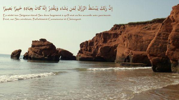 fond islam (136)