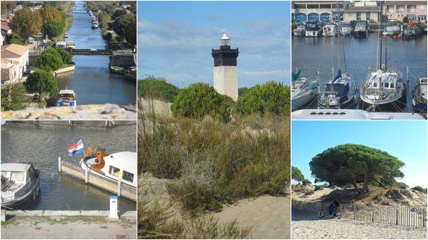 2010-11-18-appareil-photo-octobre-novembre-2010--2-.jpg