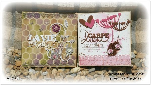 Cartes-mariage-Sandra-et-Olivier-copie-1.jpg