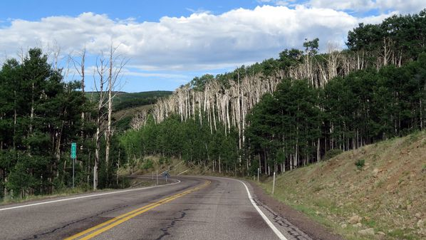 Scenic Byway 12 Dixie National Forest