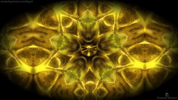 Butterfly-Wallpaper.jpg