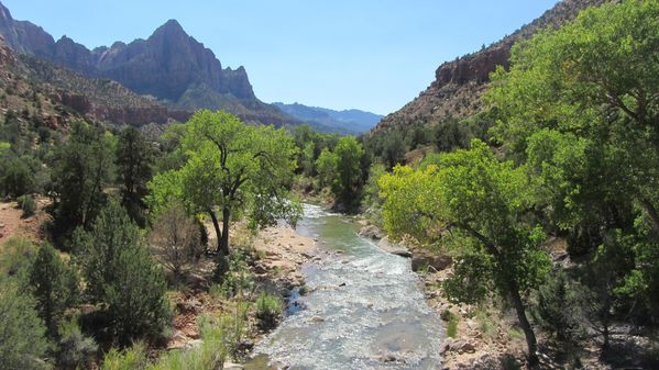 ZC06 1176 Canyon junction