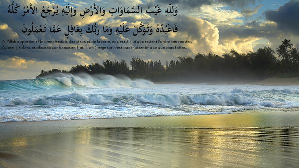 fond islam (187)