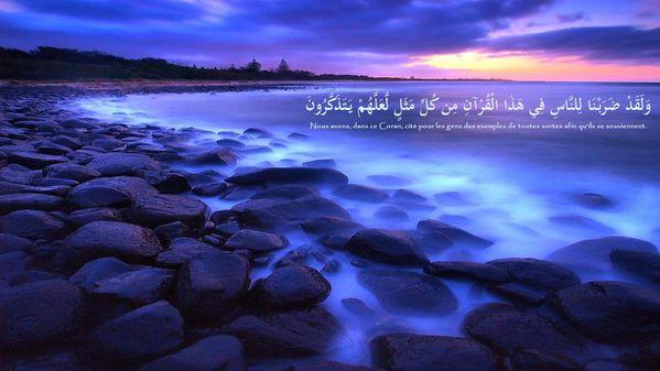 fond islam (100)