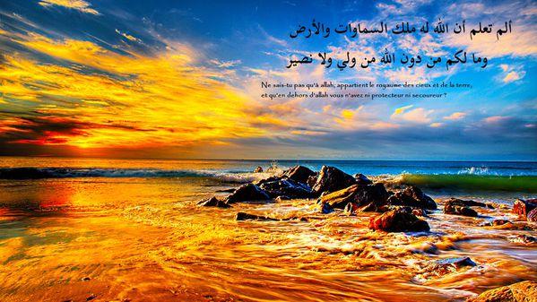 fond islam (160)