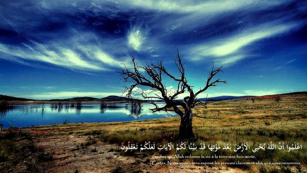 fond islam (165)