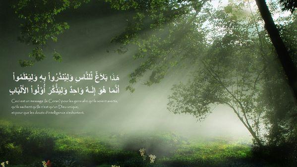 fond islam (24)