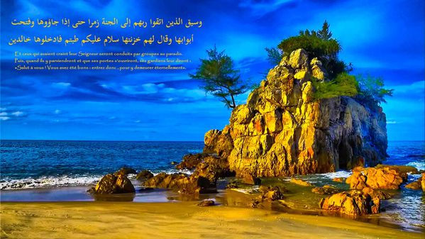 fond islam (54)