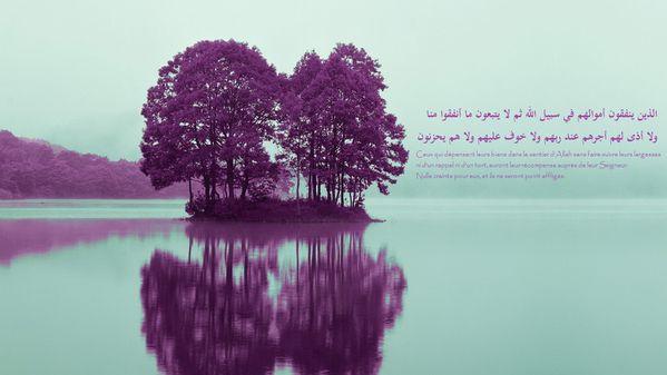 fond islam (56)