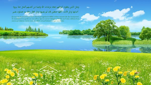 fond islam (59)
