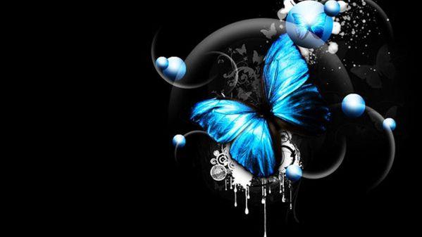 wallpaper fond d 39 cran papillon bleu le blog de. Black Bedroom Furniture Sets. Home Design Ideas