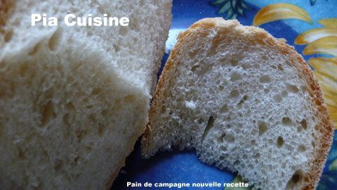 Pain-campagne-nvelle-recette--3-.JPG