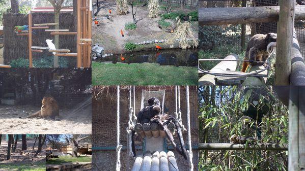 2012-03-26-zoo13.jpg