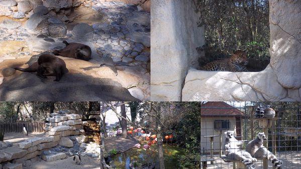 2012-03-26-zoo3.jpg