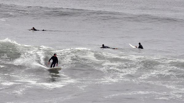 surfeurs-a-malibu-la.jpg