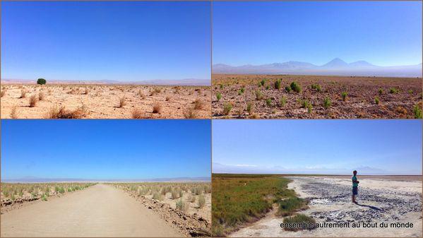 2 San Pedro d'Atacama6