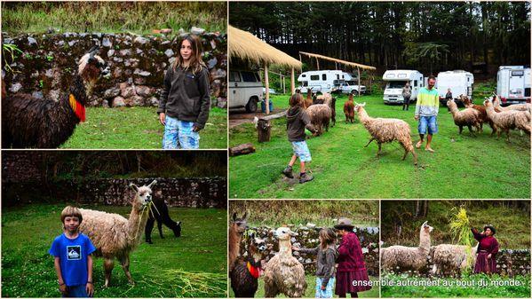 20 retour Cusco3