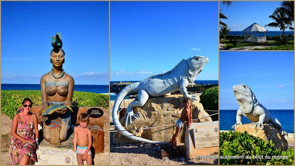 34 Cancun et Isla Mujeres14