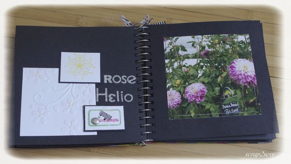 Album couleurs rose helio
