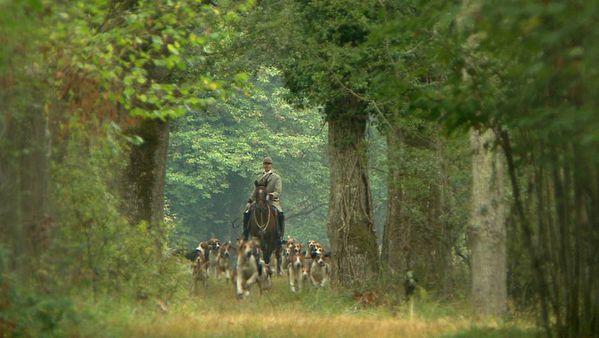 Hommes-et-chiens--compagnons-de-chasse.jpg