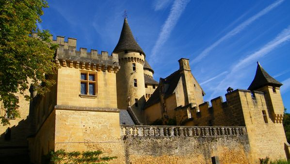 3038 Château de Puymartin