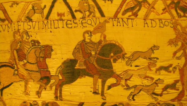 200 Bayeux Tapestry