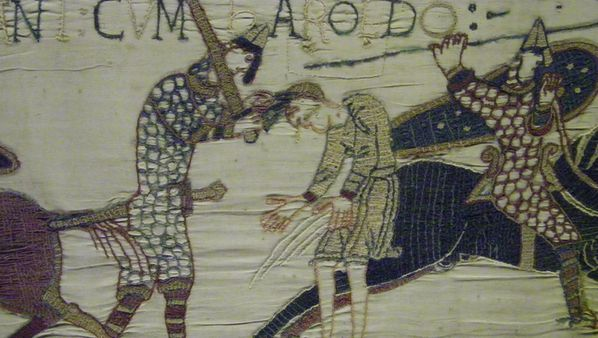 219 Bayeux Tapestry