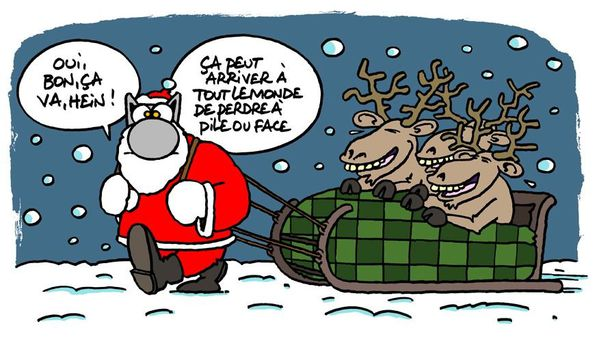 Le-Chat-55-chat-tire-traineau-de-Noel.JPG