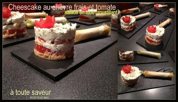 cheesecake-sale-chevre-tomate-et-salade-en-tube-croustillan.jpg
