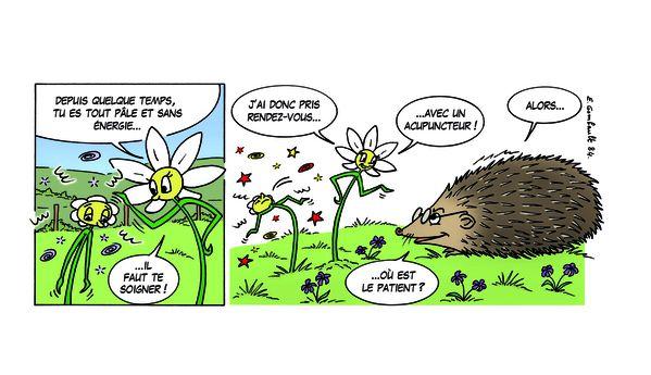 Fleur84copie