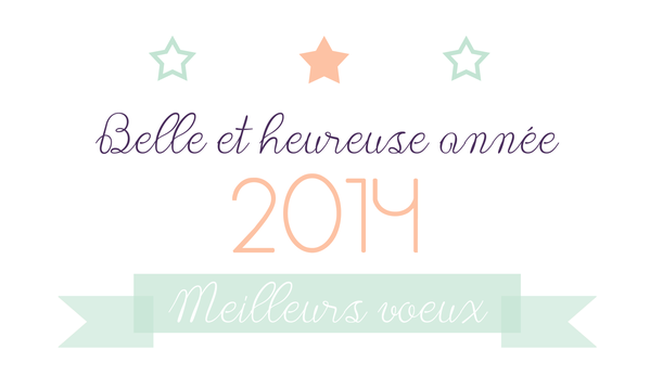 Voeux-2014.png