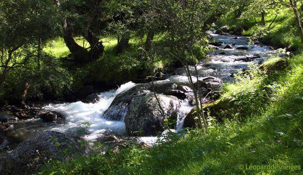 b11-29-06 Alt Pirineu 11