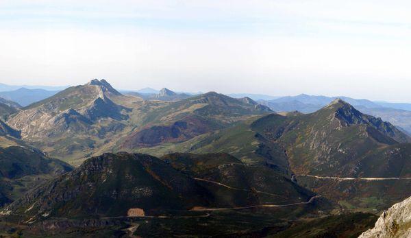 Bigaros-Ferreirua