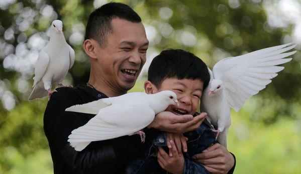 sem13avrc-Z6-Pigeons-Wuhan-Chine.jpg