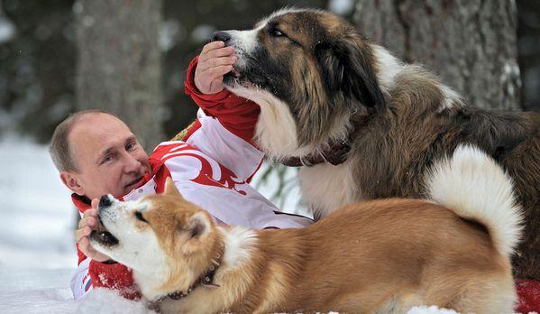 sem13avrc-Z7-Vladimir-Poutine-et-ses-chiens-Moscou-Russie.jpg
