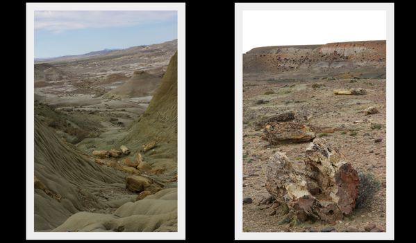 9 septembre 2012 Sarmiento +bosque petrificado1